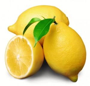 lemon-300x289
